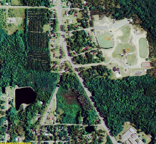 Bacon County, GA aerial photography detail