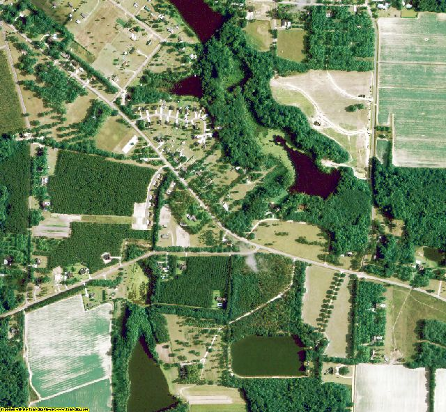 Evans County, GA aerial photography detail