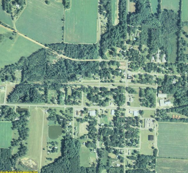 Wilcox County, GA aerial photography detail