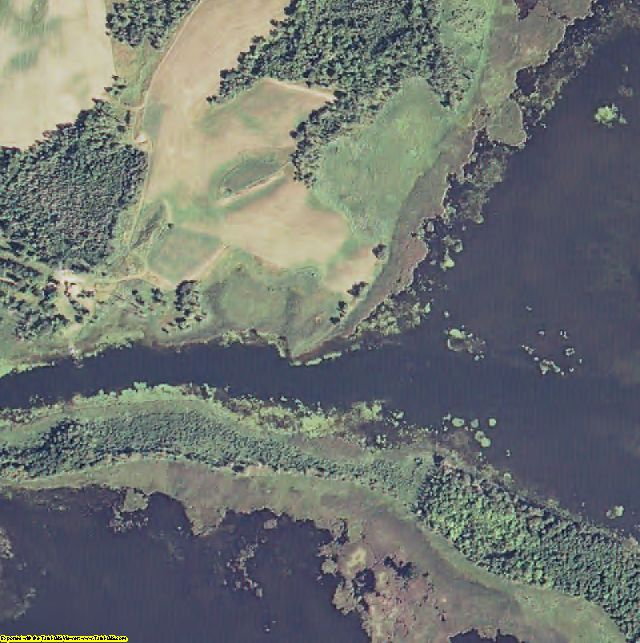 Beltrami County, MN aerial photography detail