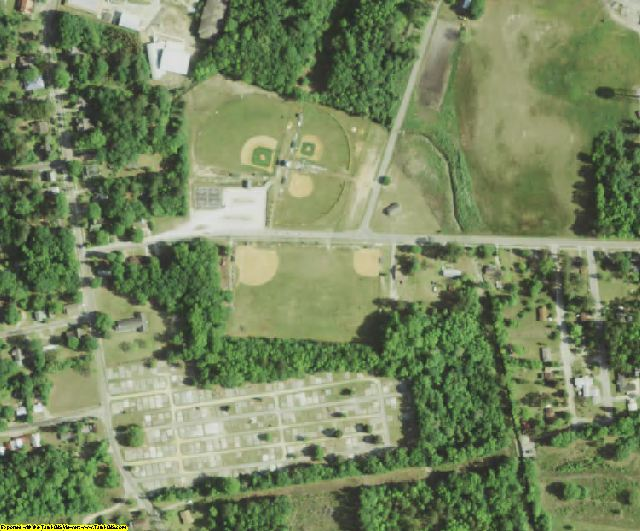 Bamberg County, SC aerial photography detail