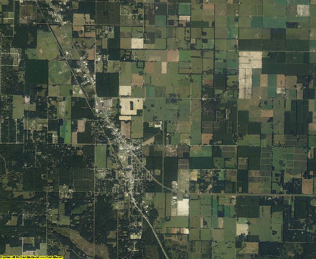 Levy County, Florida aerial photography