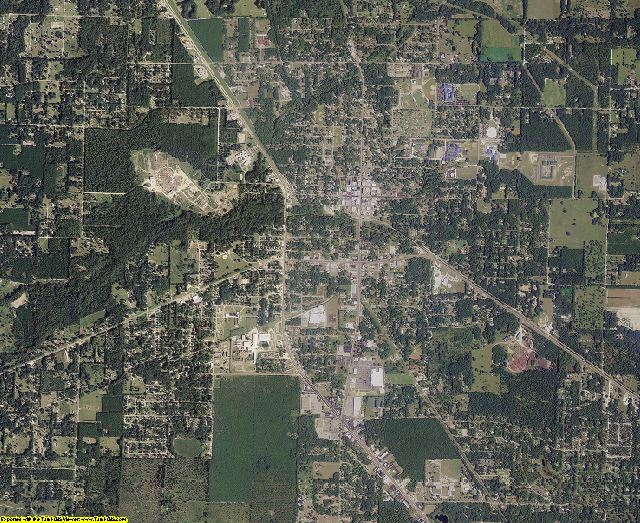 Taylor County, Florida aerial photography