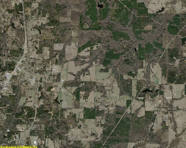 Cass County, Texas aerial photography