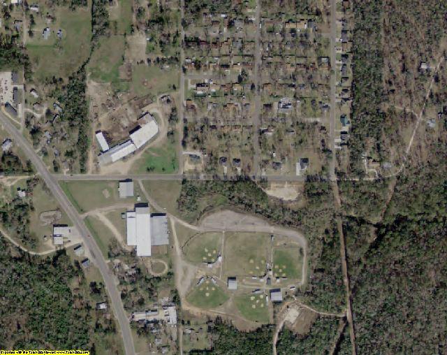 Polk County, TX aerial photography detail