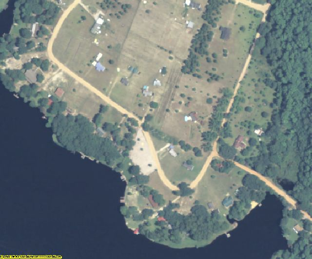 Appling County, GA aerial photography detail