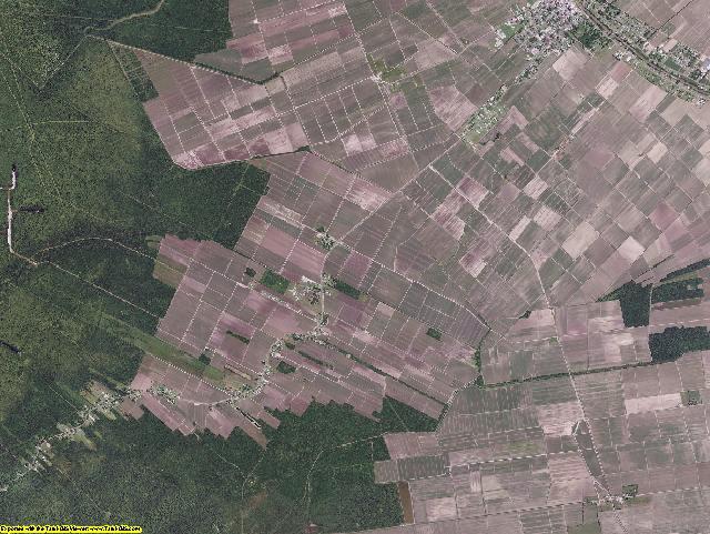 Assumption County, Louisiana aerial photography