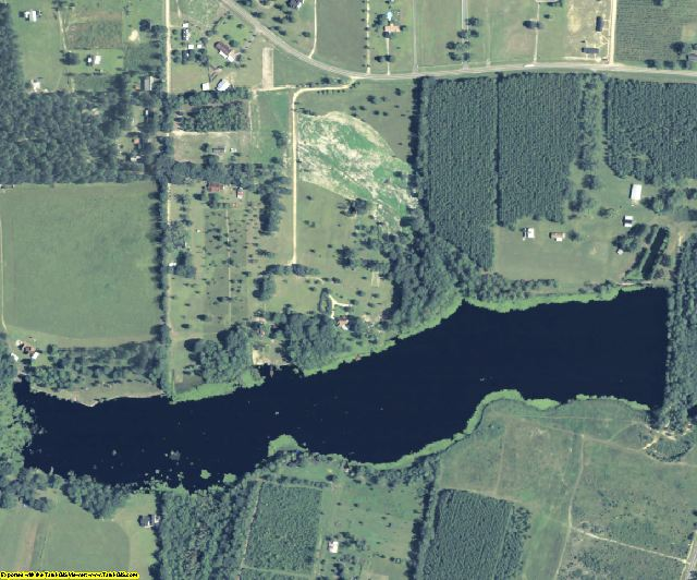 Brantley County, GA aerial photography detail