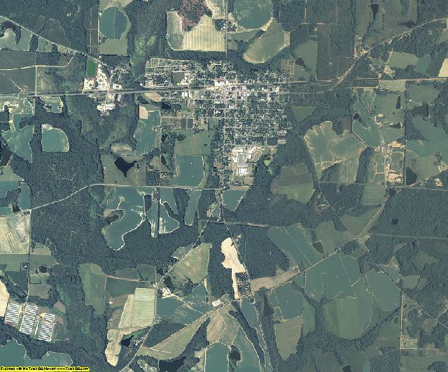 Wilcox County, Georgia aerial photography
