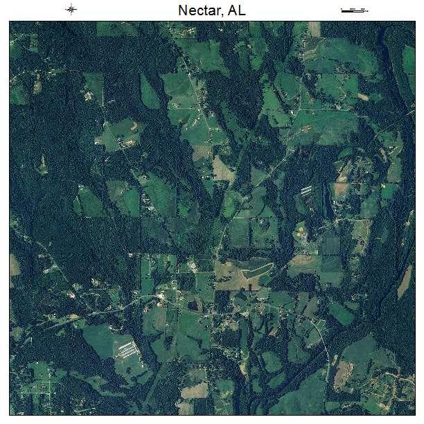 Nectar, AL air photo map