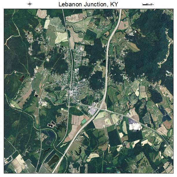 lebanon junction guys I did business with these guys and they we're nothing but class  while supplies lastmales and females$600 each pm for detailslocation lebanon junction, ky .