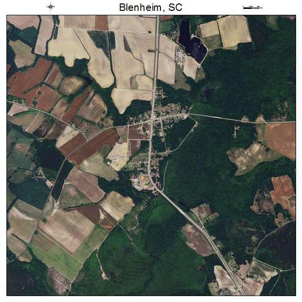 Blenheim, SC air photo map