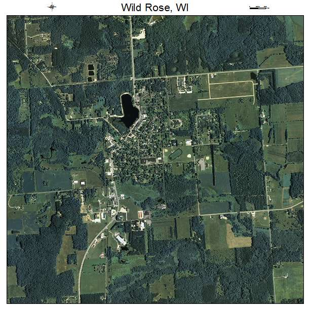Aerial Photography Map Of Wild Rose  Wi Wisconsin